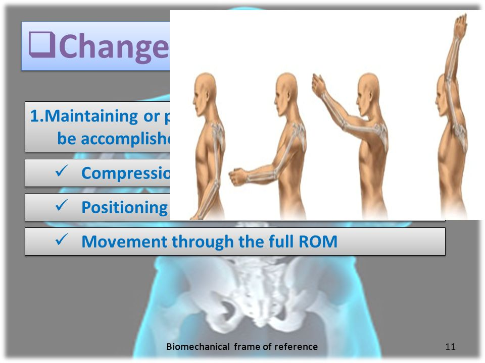 Biomechanical Frame Of Reference Occupational Therapy Pdf ...