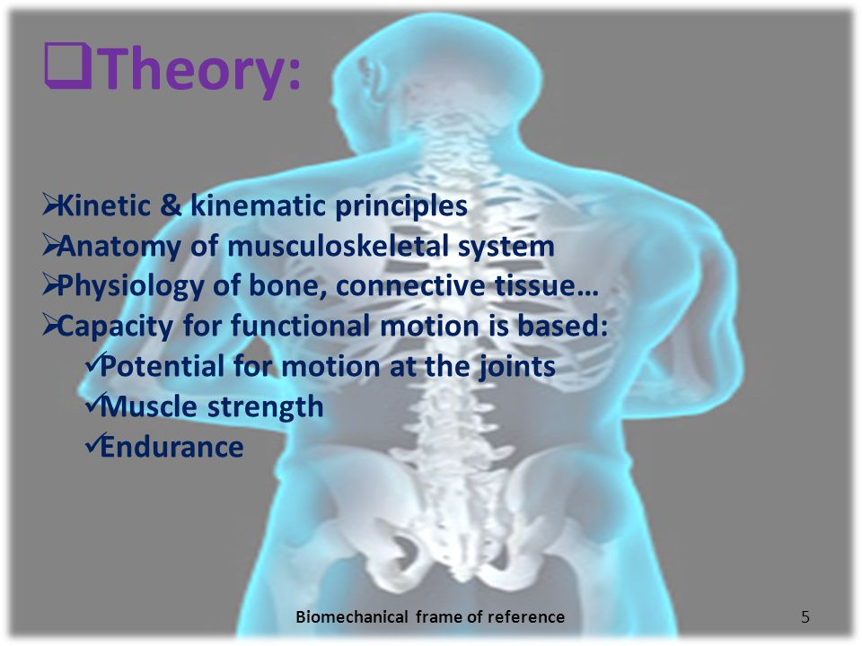 the biomechanical frame of reference in The biomechanical frame of reference applies the principles of physics to human movement and posture with respect to the forces of gravity.