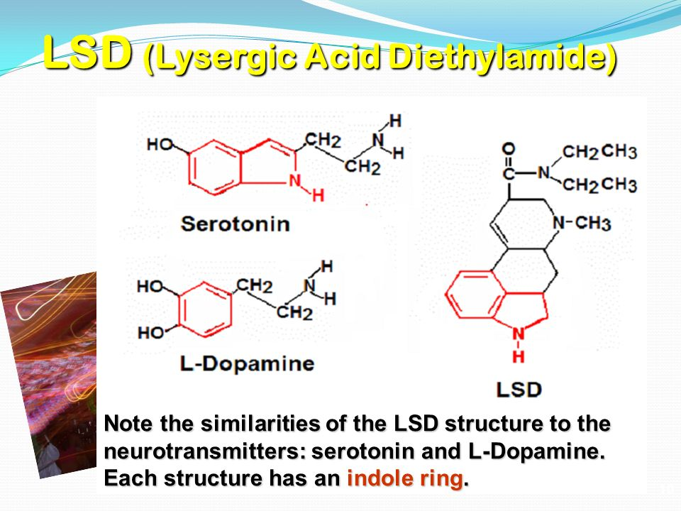the structure and effects of lsd It is still the case that lsd has the highest potency for hallucinogenic effects, however, as tables 1 and and2 2 show, when the test compounds are placed in competition with agonists, the phenethylamines doi and dob have affinities for the 5-ht 2a receptor comparable to that of lsd.