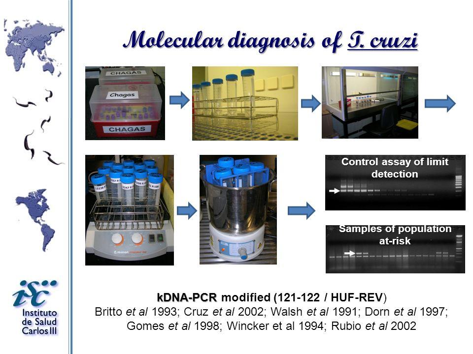 Molecular diagnosis of T. cruzi
