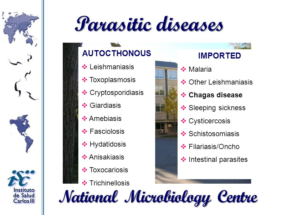 Parasitic diseases National Microbiology Centre AUTOCTHONOUS IMPORTED