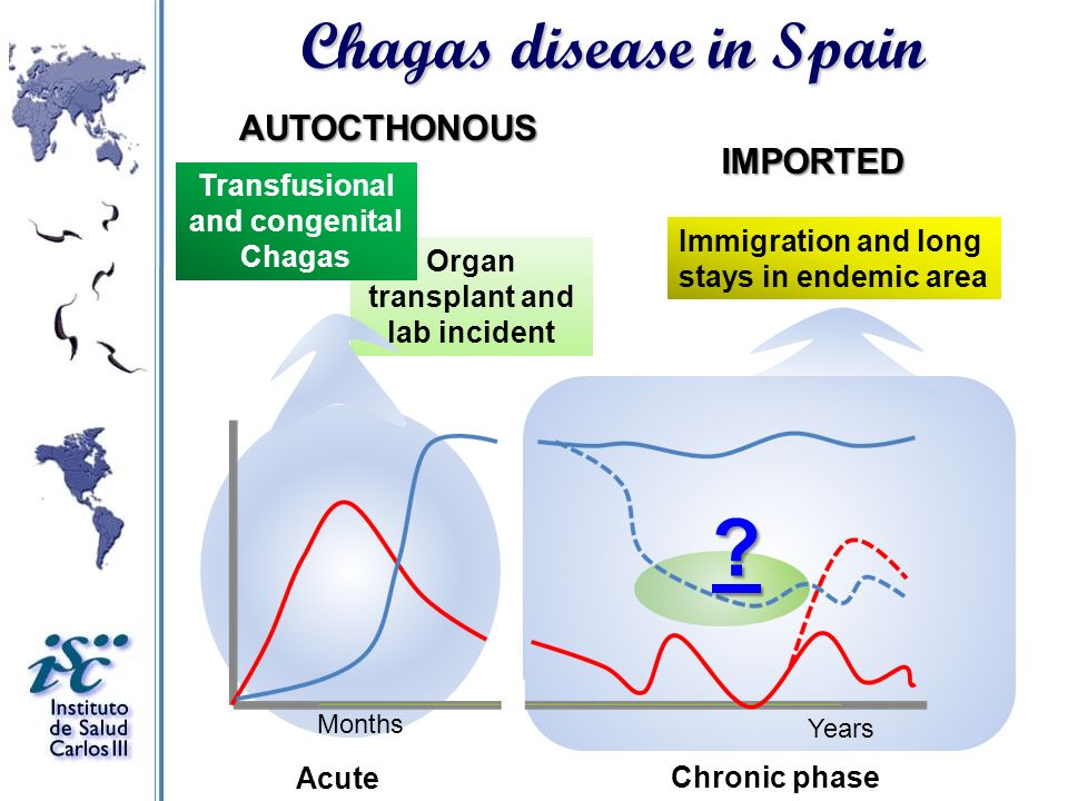 Chagas disease in Spain AUTOCTHONOUS IMPORTED