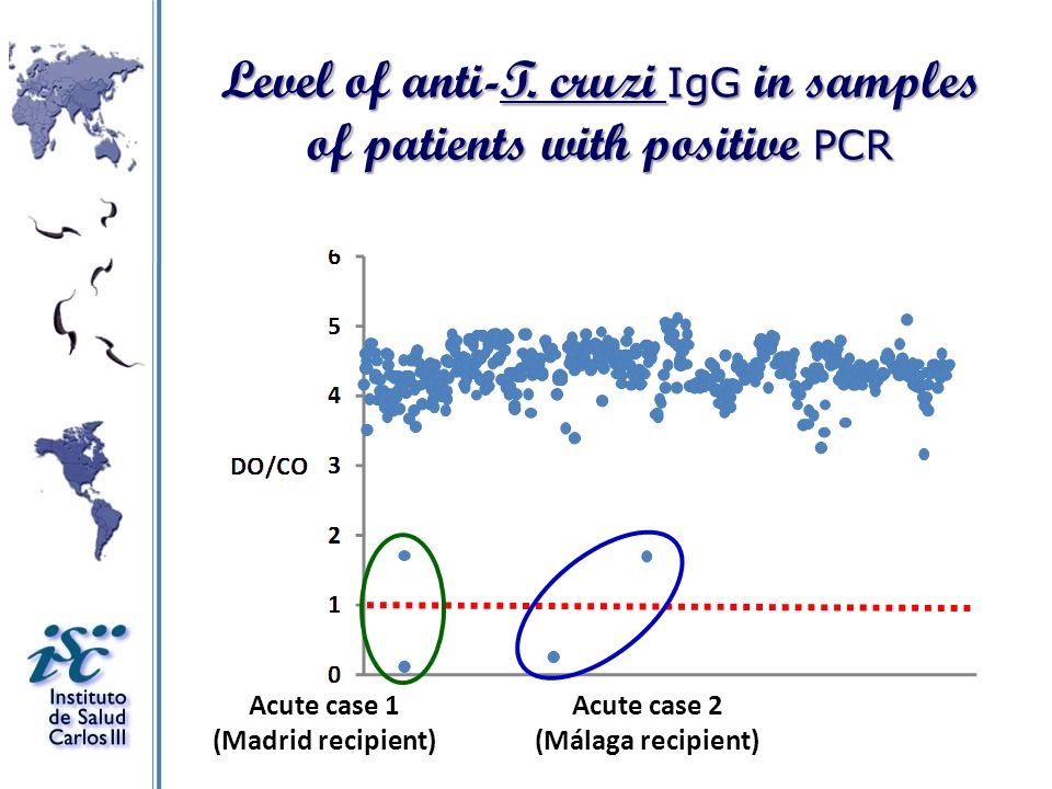 Level of anti-T. cruzi IgG in samples of patients with positive PCR