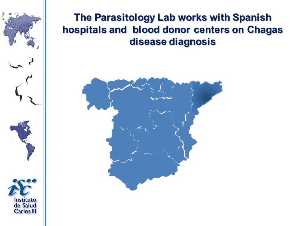 The Parasitology Lab works with Spanish hospitals and blood donor centers on Chagas disease diagnosis
