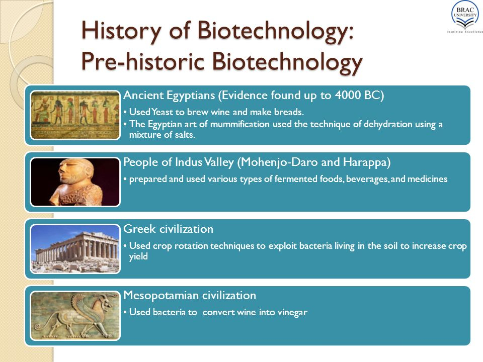 History of technology