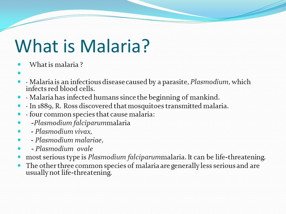 malaria is a deadly disease essay It's halted some of history's most powerful armies, infected several us presidents, and killed billions of humans throughout history malaria is the.