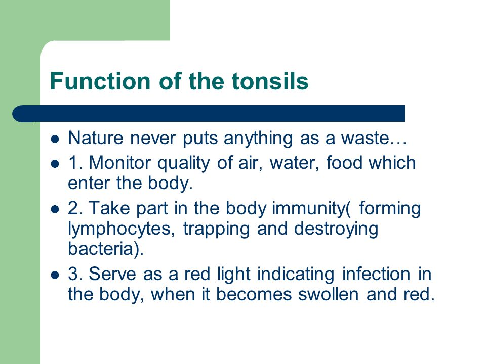 Tonsillectomy Pros And Cons Ppt Download