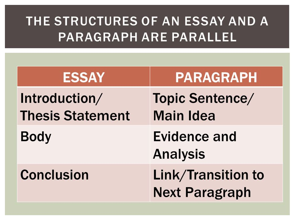 writing the body paragraphs ppt the structures of an essay and a paragraph are parallel