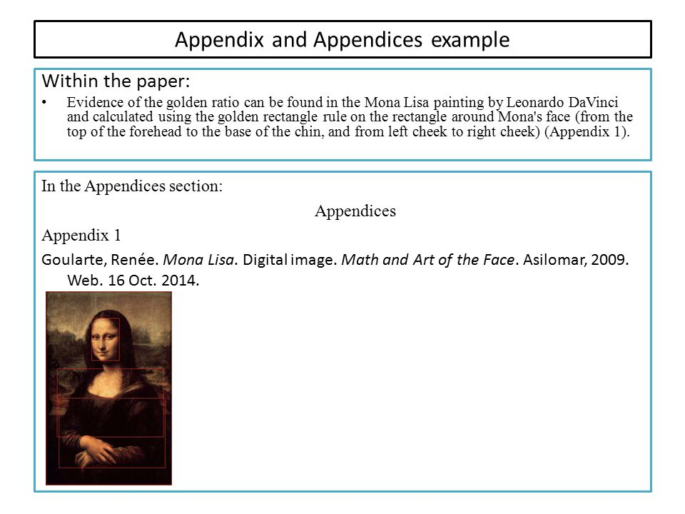 Appendix and Appendices example