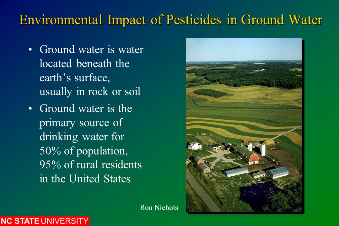 environmental effects of pesticides essay Health & environment  of exposure to toxic chemicals and pesticides in their work or home  that require a thorough consideration of impacts on environment and.