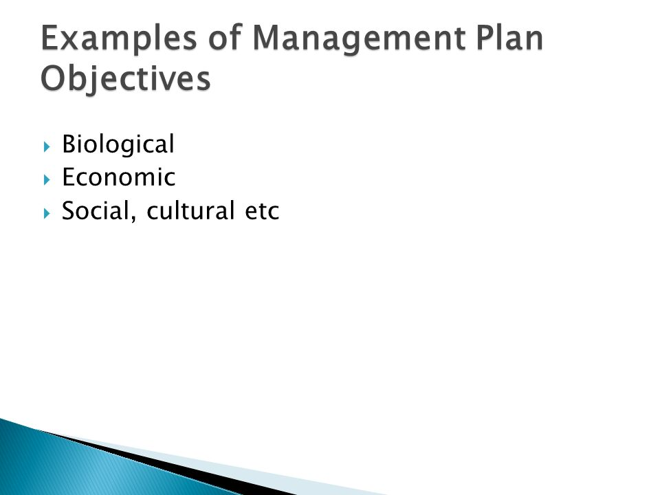 manage by objective template - training course in fish stock assessment and fisheries