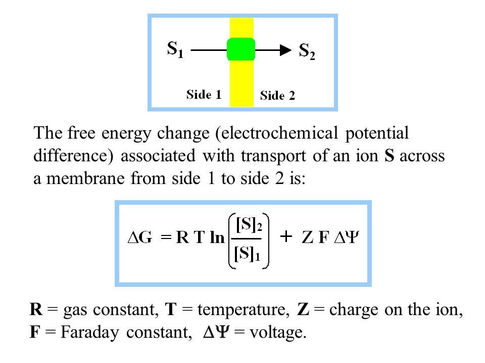 Biochemical Energetics - ppt video online download