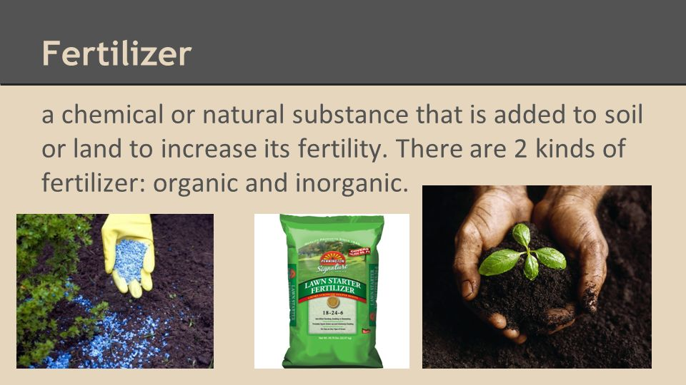 sources of organic fertilizers and amendment • soil- and foliar-applied fertilizers soil nutrients - sources   • organic fertilizer – a soil amendment derived  organic fertilizers processed fertilizers.