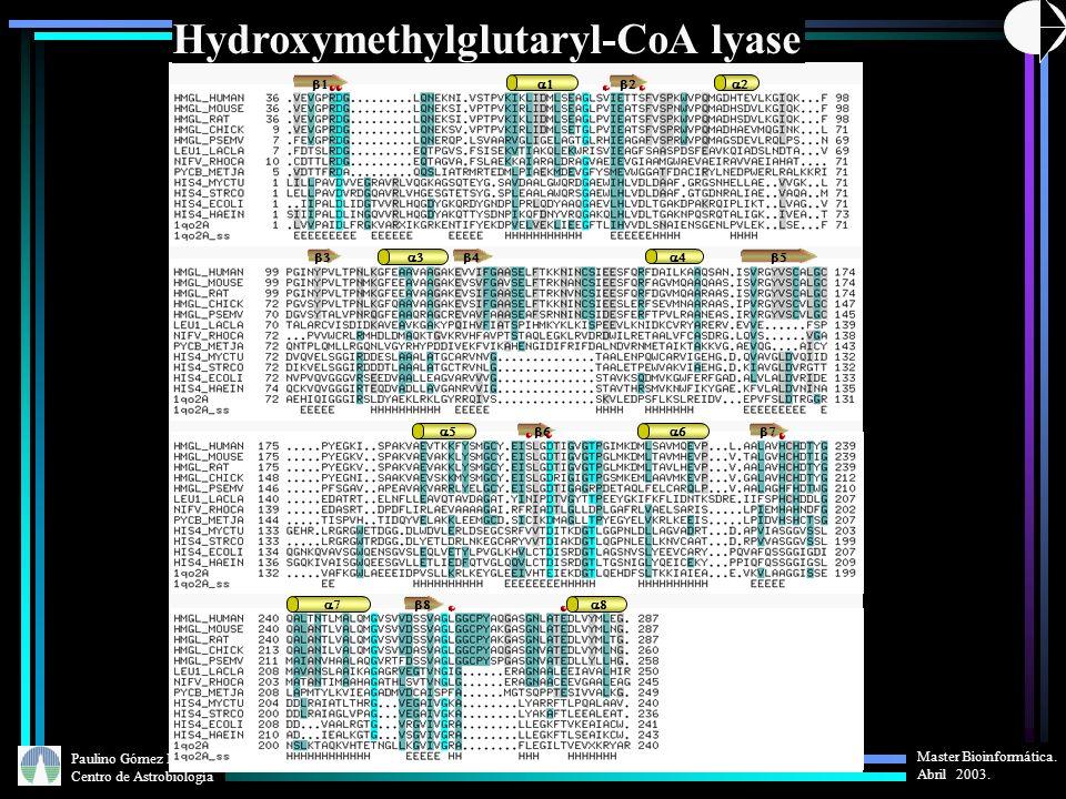 Hydroxymethylglutaryl-CoA lyase