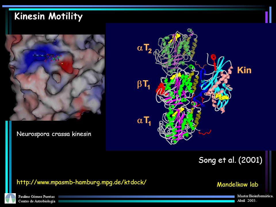 Kinesin Motility Song et al. (2001) Neurospora crassa kinesin