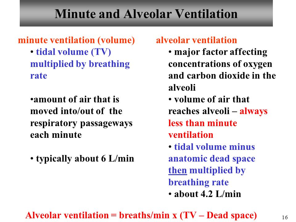 relationship between tidal volume and minute respiratory