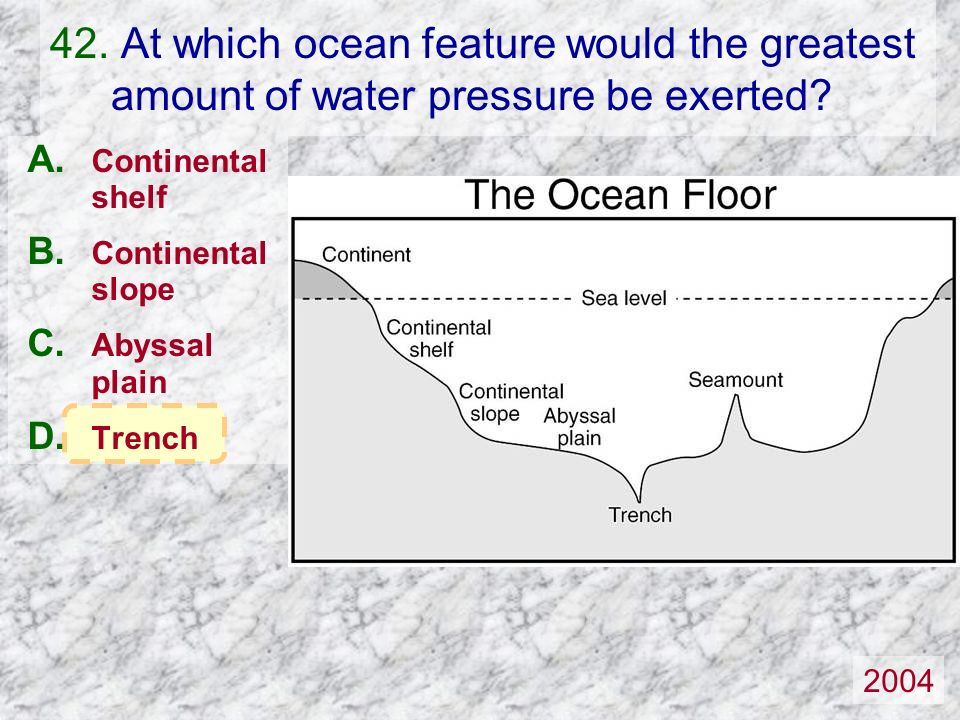 Continental shelf Continental slope Abyssal plain Trench