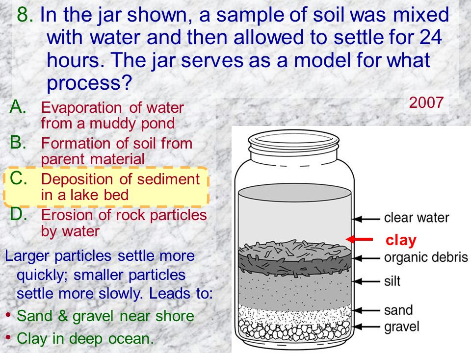 8. In the jar shown, a sample of soil was mixed with water and then allowed to settle for 24 hours. The jar serves as a model for what process