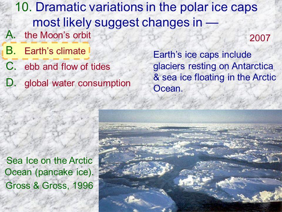 Sea Ice on the Arctic Ocean (pancake ice).