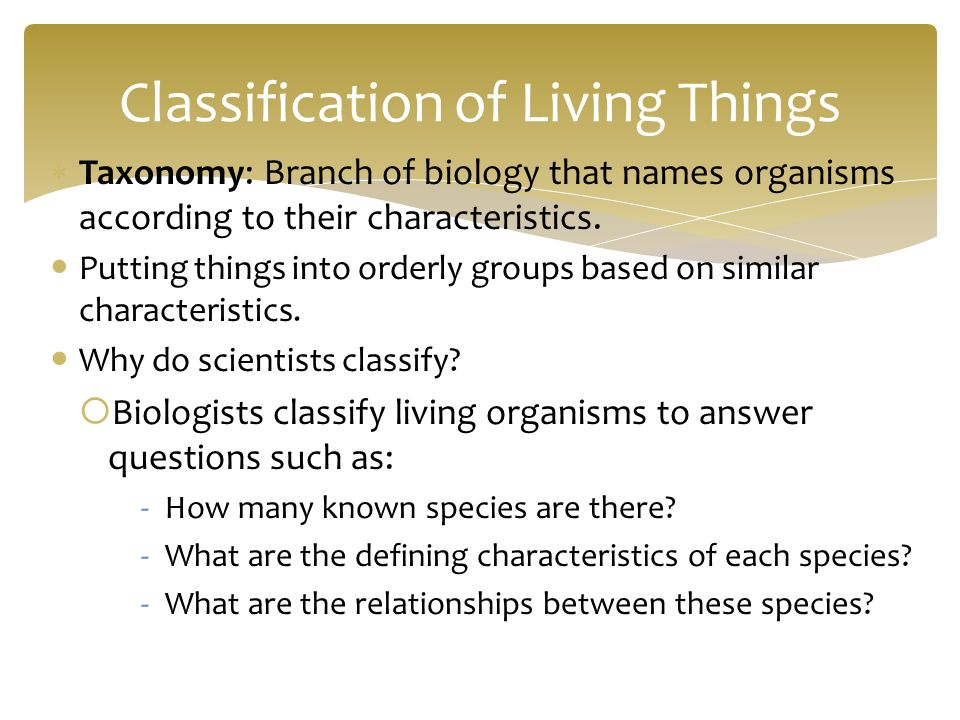 taxonomy and classification of living things 2015-11-6  perspectives on taxonomy, classification, structure and find-ability  living things or the earth's fundamental elements we are now applying.