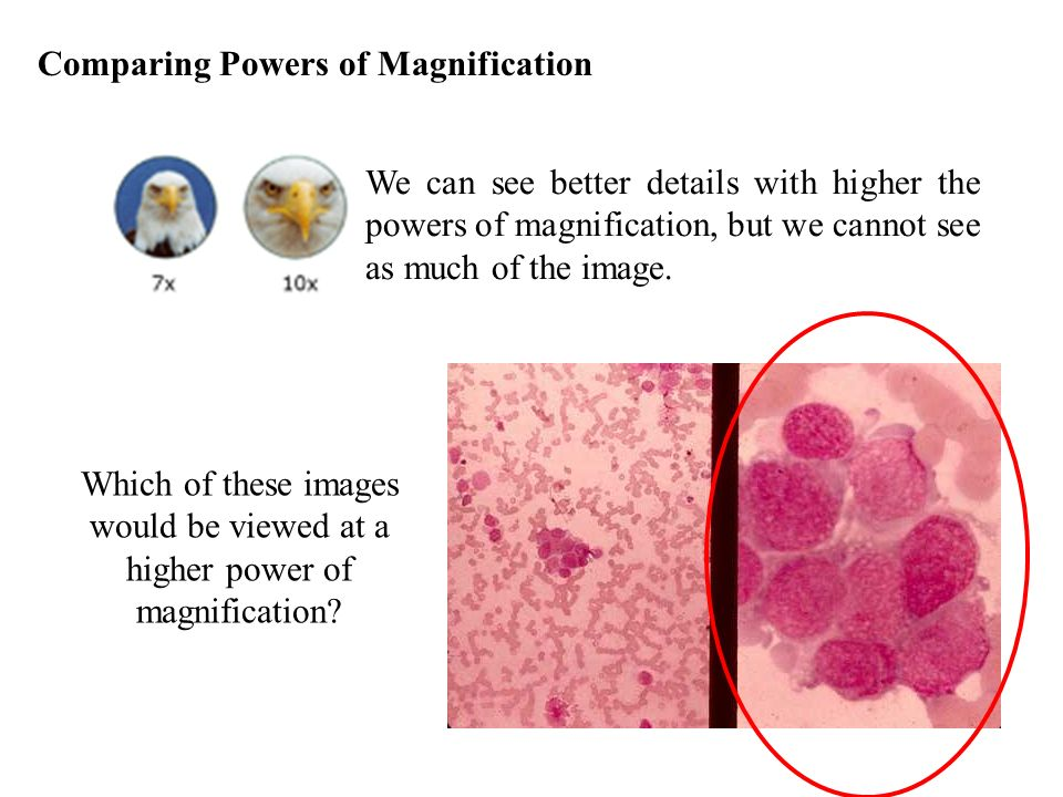 Comparing Powers of Magnification