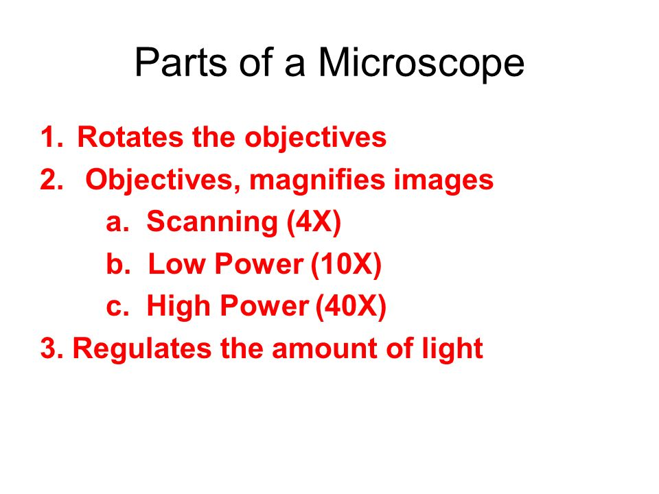 Parts of a Microscope Rotates the objectives