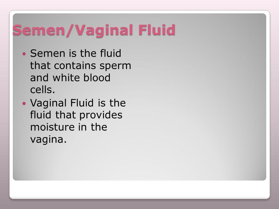 Semen/Vaginal Fluid Semen is the fluid that contains sperm and white blood cells.