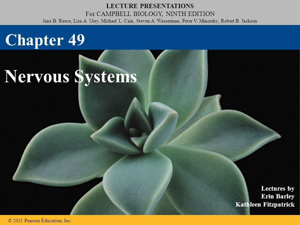 lecture the molecules of cells chapter