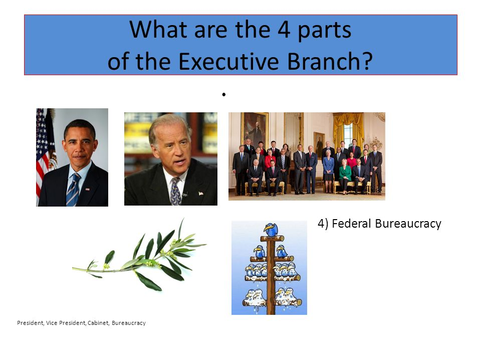 Executive Branch The Presidency. - ppt video online download