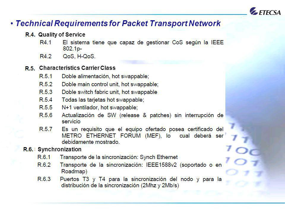 Technical Requirements for Packet Transport Network