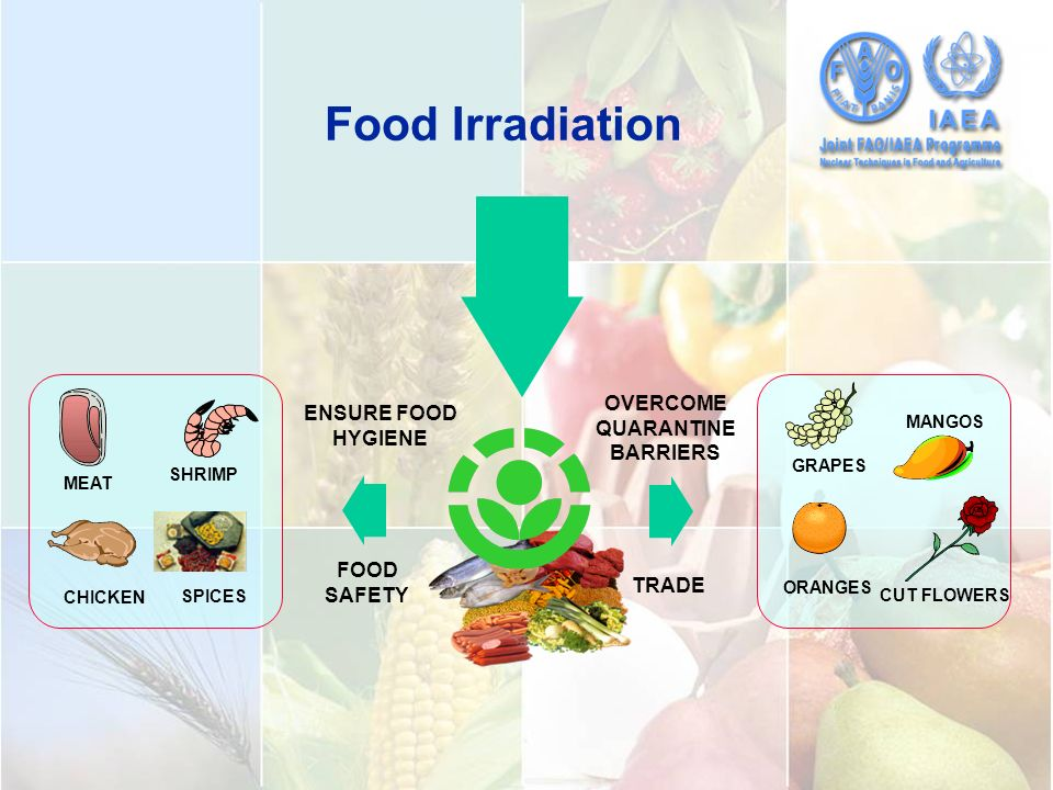 is food irradiation safe essay If this isn't pros and cons of food irradiation enough of a are safe for human consumption the food and food rainy season short essay spoilage.