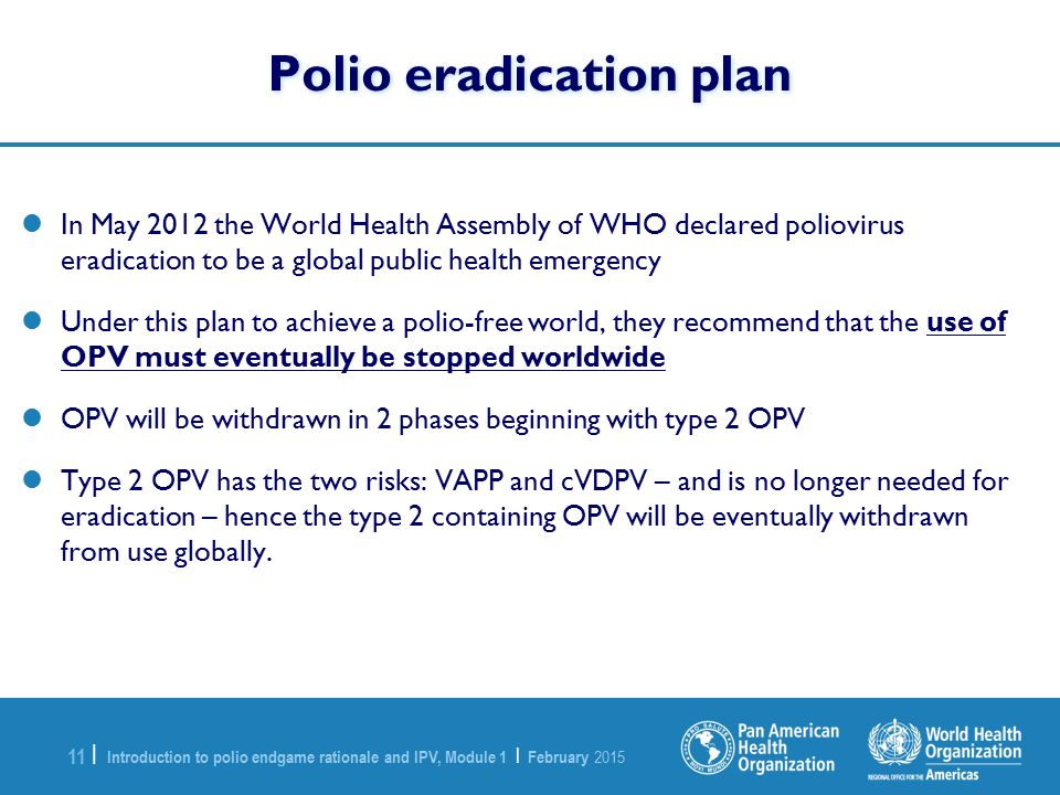 Polio eradication plan