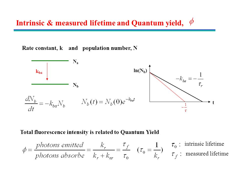 fluorescence lifetime and quantum yield relationship