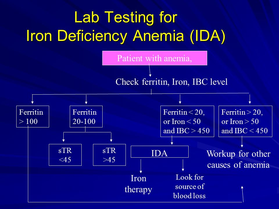 Anemia In Pregnancy Ida Changing Concept Ppt Download