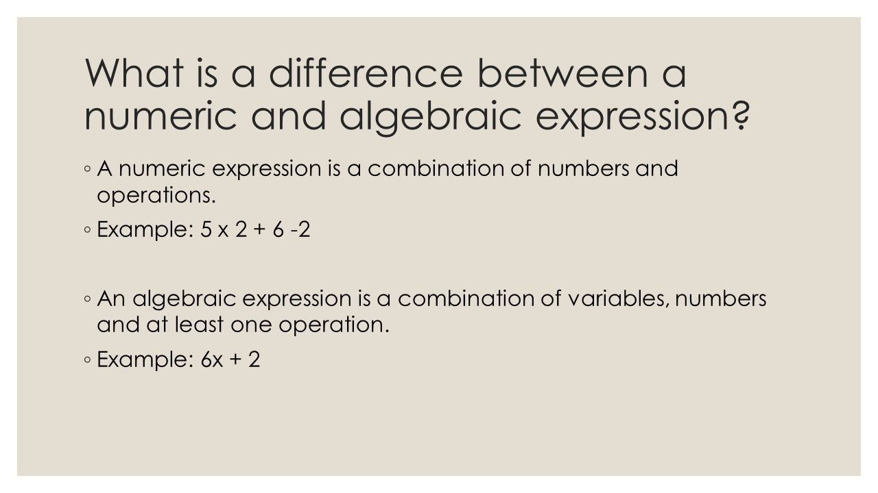 worksheet Algebra Vocabulary Worksheet algebraic expressions notes ppt download what is a difference between numeric and expression