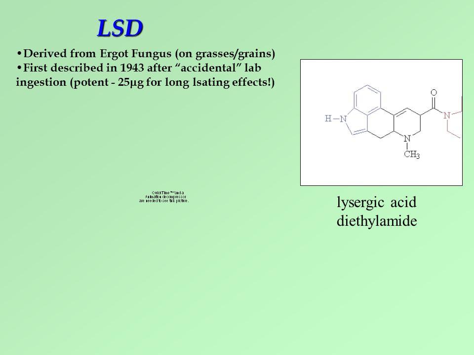 how to make lysergic acid diethylamide drug