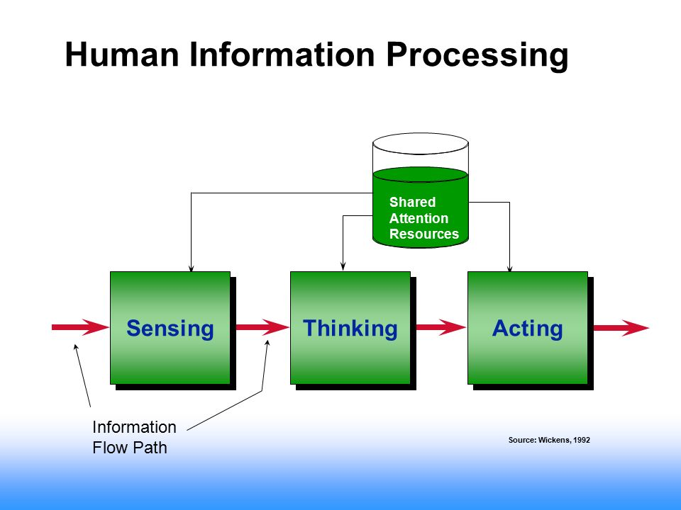 human information processing The online version of human information processing by peter h lindsay and donald a norman on sciencedirectcom, the world's leading platform for high quality peer.
