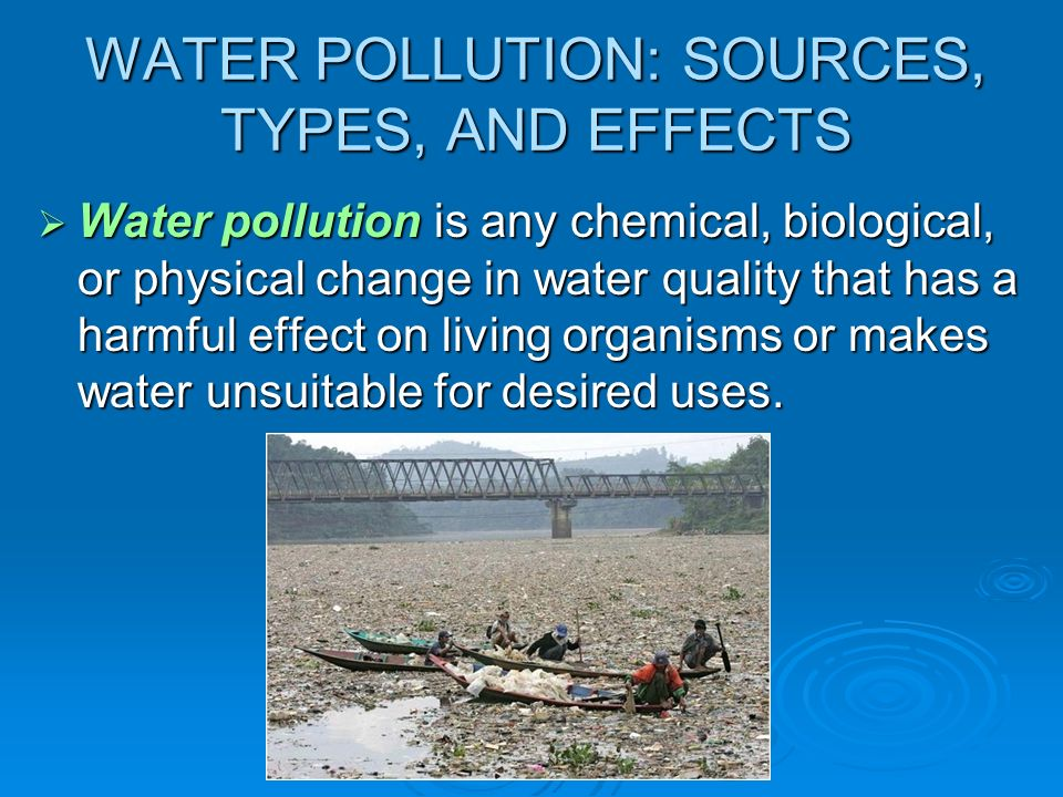 the water pollution gizmo types of Learn water pollution with free interactive flashcards choose from 500 different sets of water pollution flashcards on quizlet  pathogens-such as types of .