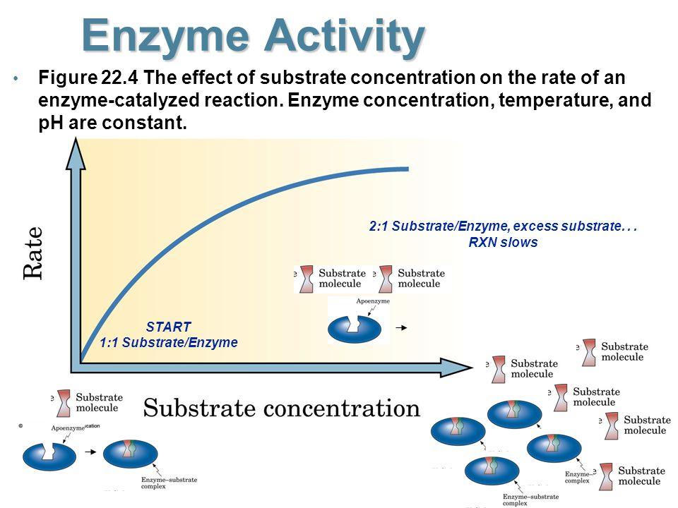 Aspirin Inhibits Cycloxygenase - ppt video online download
