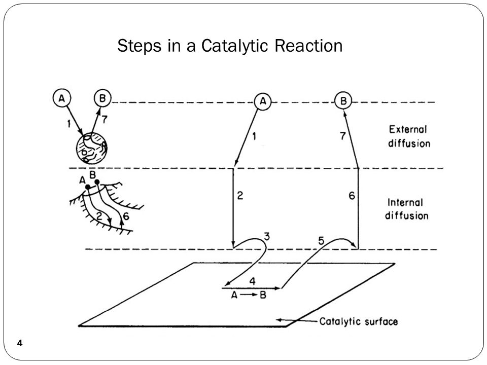 Kinetics of Heterogeneous Catalytic Reactions