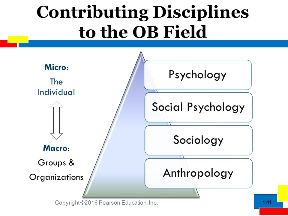 behavior sociology and psychological core Online-psychology-degree-vs-online-sociology-degree to understand human  behavior and social and emotional reactions, sociologists look.