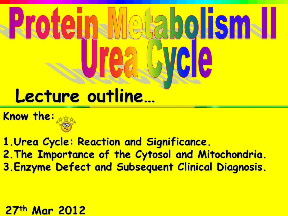 what is the major waste product of protein metabolism