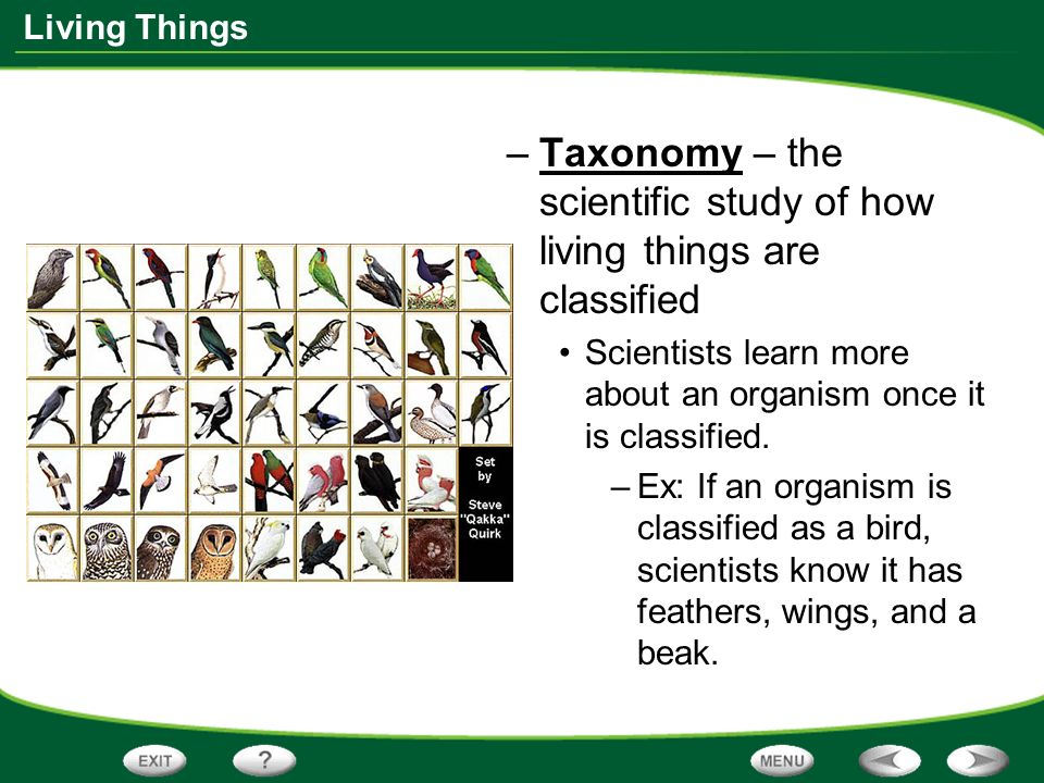 Science that deals with study of living things