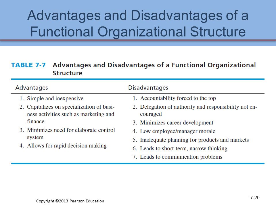 benefits & disadvantages of a functional organizational structure essay We will write a custom essay sample on organization structure: what is functional  advantages & disadvantages  meyer's organizational structure selection .