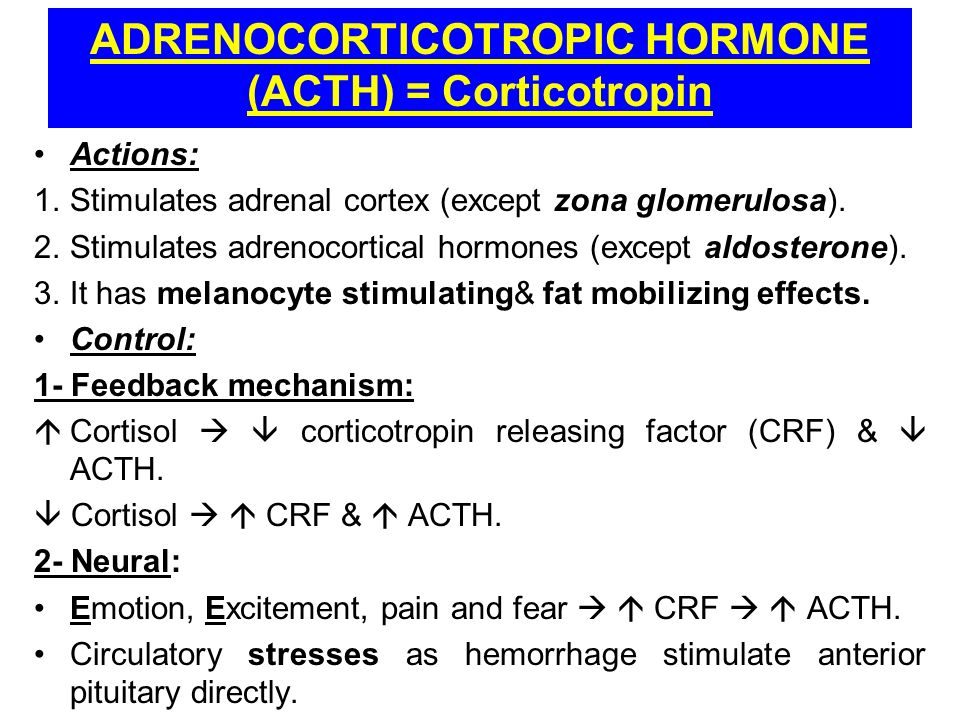 testosterone effects on the body