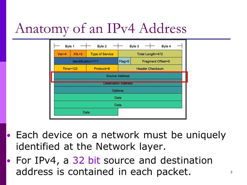 Anatomy of ip address