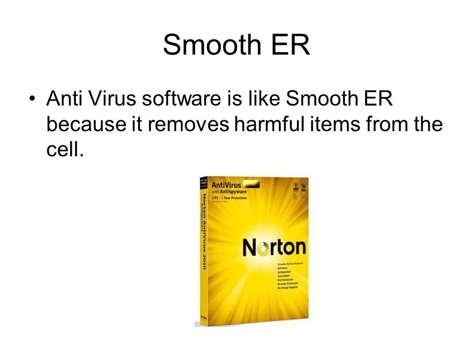 analogy for smooth er Cell Analogy Computer. - ppt video online download