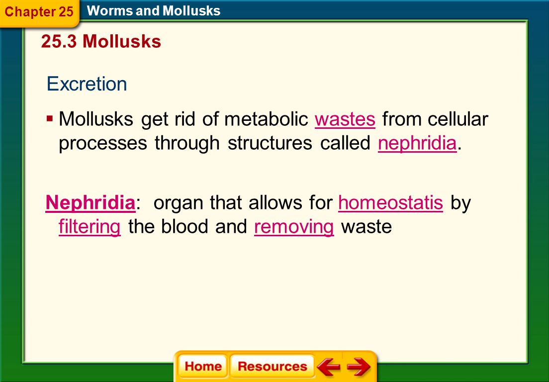 how to get rid of metabolic waste