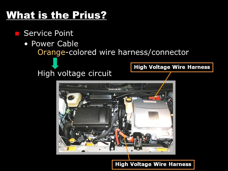 High+Voltage+Wire+Harness+High+Voltage+Wire+Harness n a , europe, australia, etc ppt video online download 6 wire high voltage harness at reclaimingppi.co