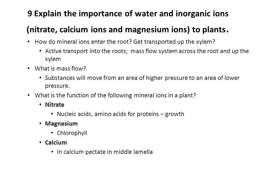 Importance of calcium ions